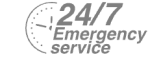 24/7 Emergency Service Pest Control in Wealdstone, Harrow Weald, HA3. Call Now! 020 8166 9746